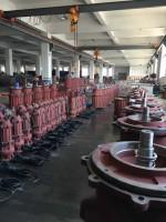 安徽潜污泵